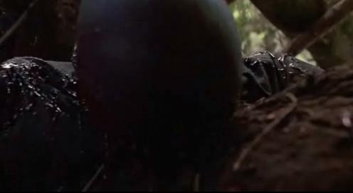 Хищник только что убил Мака